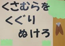 せみ (4).JPG