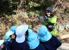 山登り (5).JPG